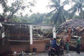Pohon tumbang tewaskan satu orang di Depok