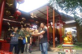 Melihat tradisi warga Pecinan Glodok pada pesta Demokrasi