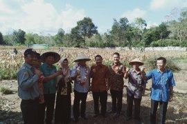 Bupati Bangka Tengah minta seluruh sekolah punya lahan jagung