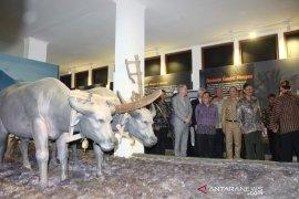 Museum Tanah dan Pertanian di Bogor resmi dibuka