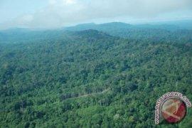 Kaltim dipercaya menjaga kelestarian hutan
