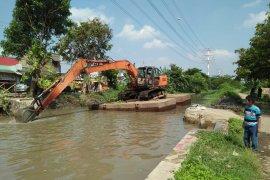 Dinas Pertanian Tangerang tingkatkan panen meski lahan terbatas
