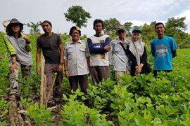 Suo-Suo Kabupaten Tebo potensial  jadi pusat penangkaran benih kedelai