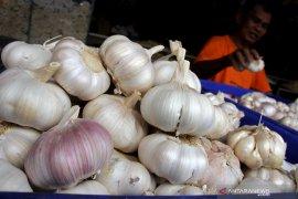 Di Bandarlampung bawang putih Rp70.000/kilogram