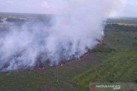 Satgas berusaha padamkan Karhutla di zona inti Cagar Biosfer Riau