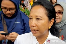 Menteri BUMN: Tarif Garuda akan ikuti aturan Kemenhub