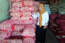 Harga bawang putih masih Rp50 ribu/kg