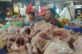 Pedagang Pasar Badung keluhkan turunnya harga daging ayam