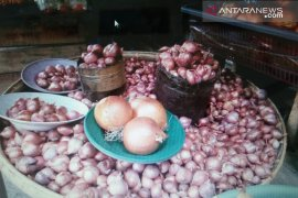 Baubau Sulteng, impor bawang putih 20 ton