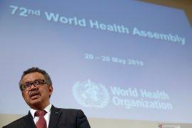 WHO: Virus corona muncul secara alami, bukan rekayasa