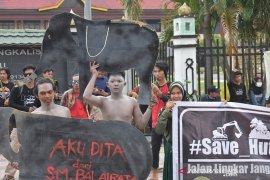 BBKSDA Riau pertahankan Hutan Talang dari proyek pembangunan jalan
