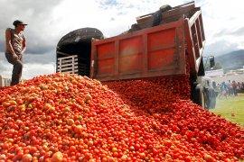 Petani Meksiko donasikan tomat karena permintaan sepi dampak corona