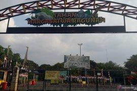 Taman Margasatwa Ragunan siap sambut libur Natal dan Tahun Baru