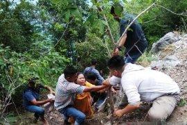 Empat warga meninggal dunia kecelakaan di jalan lintas barat Aceh