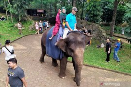 Ribuan warga berwisata kunjungi Kebun Binatang Bandung
