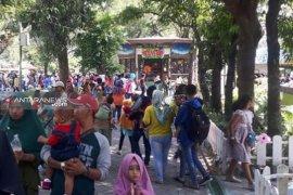 Kebun Binatang Surabaya dipadati pengunjung  Lebaran