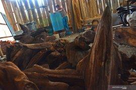 Papua Barat pacu ekspor hasil hutan bukan kayu