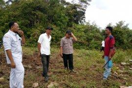 Kawanan gajah merusak kebun sawit di Aceh Utara
