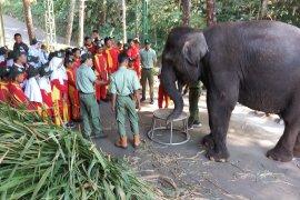Ratusan siswa SD Pasuruan belajar konservasi hewan dilindungi