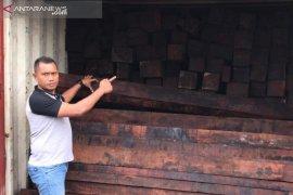 Polda amankan empat kontainer kayu merbau di Sorong