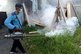 Puluhan anak terjangkit DBD di Aceh Barat