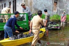 Kota Samarinda kembali banjir setelah hujan lebat