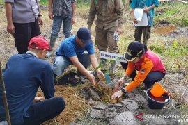 Singkawang arahkan petani budi dayakan padi bebas pestisida