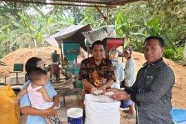 Bulog Maluku tetap beli beras dari petani Buru