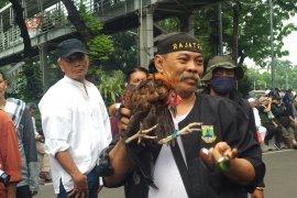 Aksi debus jawara Banten hibur pengunjuk rasa di Patung Kuda, Jakarta