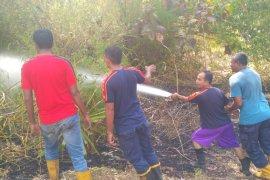 Rumpun bambu ludes terbakar di Bireuen