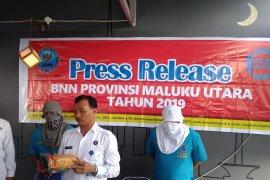 BNNP Malut bekuk kurir terima ganja asal Medan