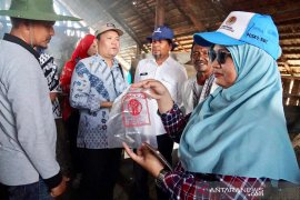 Kemenko Maritim tinjau produksi garam Aceh dengan sistem  tunnel