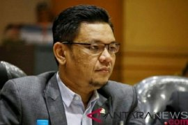 Komisi VIII Ace Hasan Syadzily nilai regulasi tegaskan keberadaan ekonomi syariah