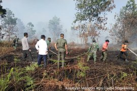 BPBD Singkawang ingatkan warga jangan bakar lahan