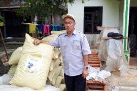 """Pupuk """"Biotara"""" tingkatkan produksi padi rawa hingga 20 persen"""