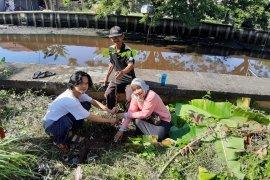 Babinsa ajak masyarakat peduli lingkungan dengan tanam pohon di Sungai Jawi