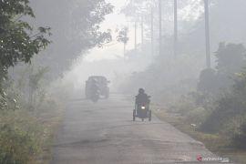BNPB: Luas kebakaran hutan dan lahan capai 30.477 hektare