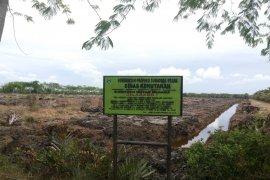Mangrove Langkat dapat mendukung devisa