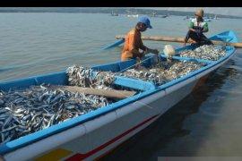 """BPSPL """"luruskan"""" video viral tentang ikan """"terdampar"""" di Pantai Batu Bolong"""