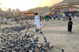 Jelang puncak haji, Terminal Syeib Amir Mekkah semakin padat