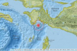 Gempa bumi 4,8 magnitudo guncang Kabupaten Kaimana