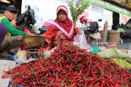 Harga cabai merah di Baturaja tembus Rp100 ribu per kilogram