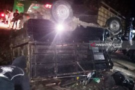 Mobil pengangkut babi tabrakan, satu penumpang meninggal