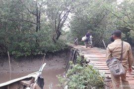Petani Airmenduyung Bangka Barat minta perbaikan jembatan menuju sawah