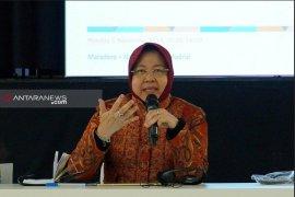 Risma: Konservasi hutan mangrove atasi permasalahan lingkungan di Surabaya