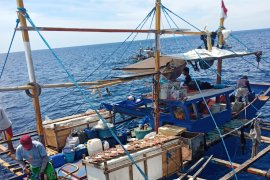 KKP tangkap enam kapal asing ilegal di dua lokasi perairan Indonesia