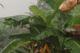 Kota Pontianak sempat diguyur hujan dengan intensitas sedang