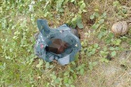 Mayat bayi ditemukan membusuk di pinggir sungai