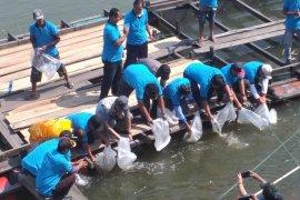 Cegah ikan endemik punah, FAO dan KKP ajak warga Kampar jaga habitat ikan