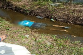 Mayat pria ditemukan dalam parit di depan tambak udang TD Pardede
